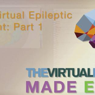 TVB Made Easy: The Virtual Epileptic Patient: Part 1